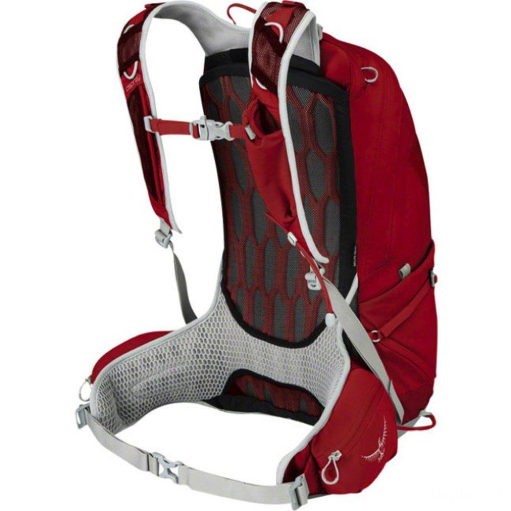 limited sale osprey talon 22 backpack  martian red best price last chance