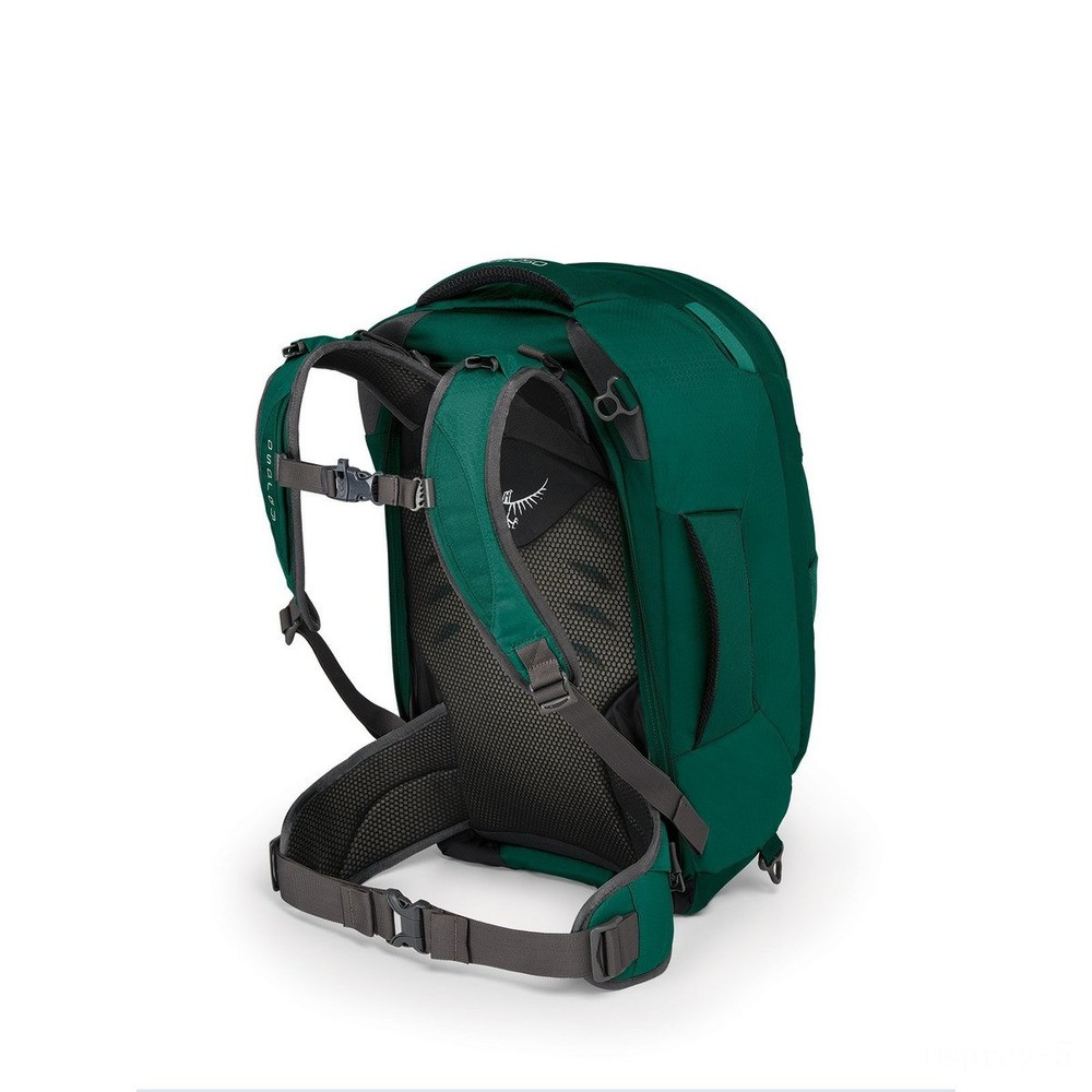 last chance osprey fairvew 40 - rainforest green  limited sale best price