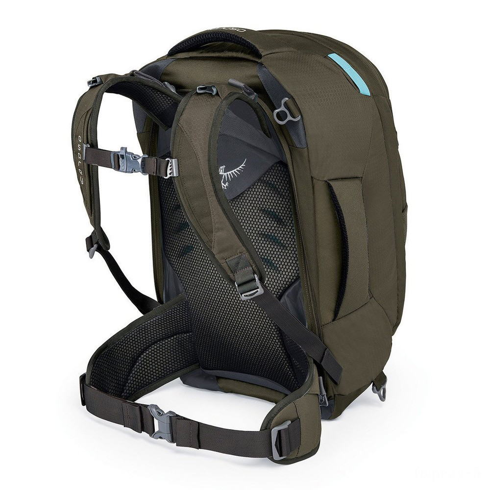 limited sale osprey fairview 40l trekking backpack – womens  misty grey last chance best price