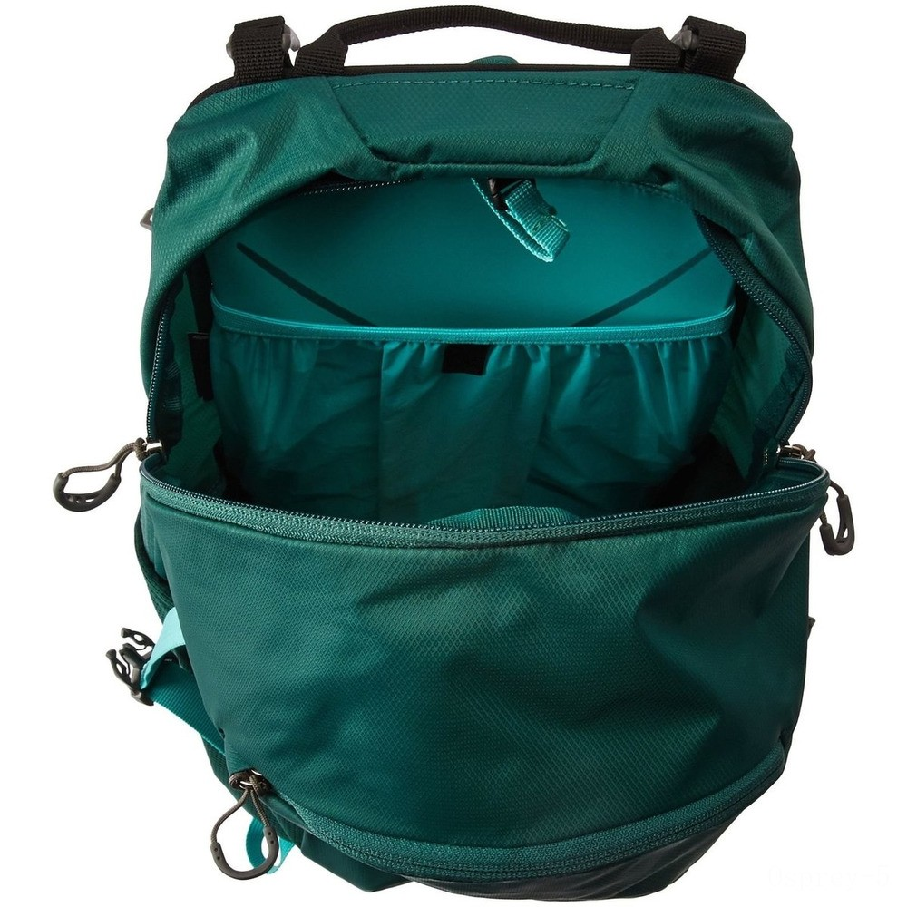 limited sale osprey hikelite technical backpack - 18 l  aloe green last chance best price